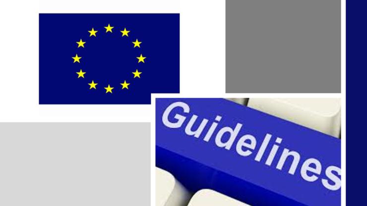 Linee guida della Commissione Europea